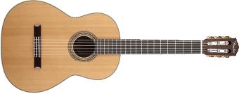 guitare folk ou classique