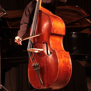 introduction to double bass